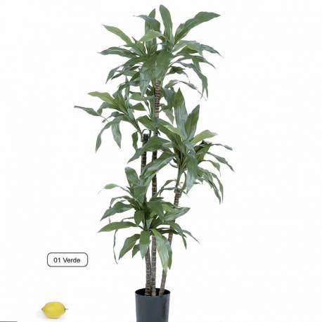 DRACENA FRAGANS ARTIFICIAL 135