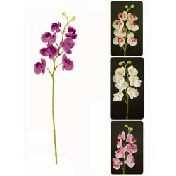Phalaenopsis artificial x 7 flors