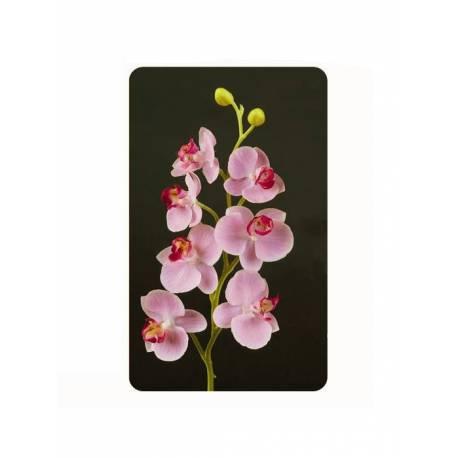 Phalaenopsis artificial x 7 flors