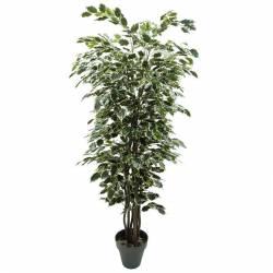 Arbol ficus artificial exotica variegata