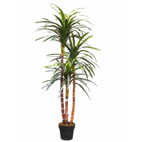 Planta dracena marginata artificial 150