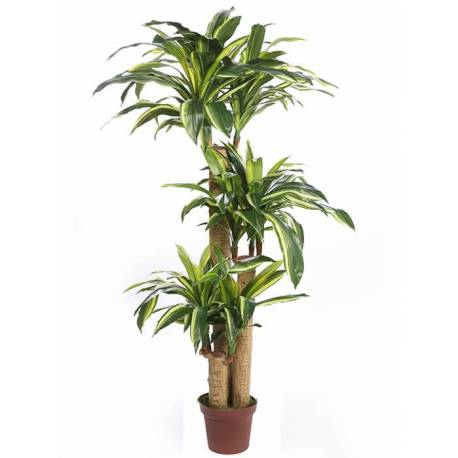 Planta artificial tronco de Brasil bicolor 135
