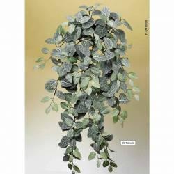 Planta artificial que penja fitonia