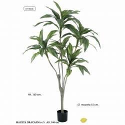 Planta artificial dracaena 160