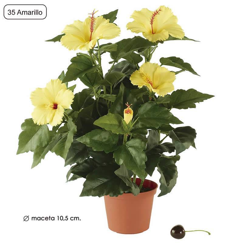 Planta artificial hibiscus con maceta oasis decor for Hibiscus arbol