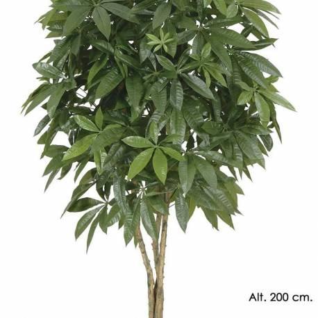 Planta Pachira artificial diverses mesures