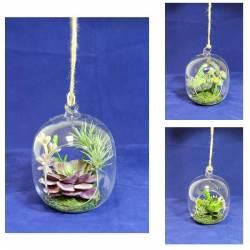 Cactus artificiales en pecera de cristal colgante