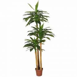 Dracena artificial amb test 180
