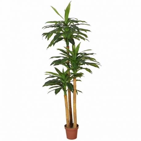 Dracena artificial amb test 170
