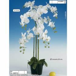 Maceta con 6 phalaenopsis artificiales
