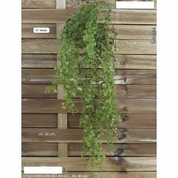 Planta colgante plastico colandrillo 080