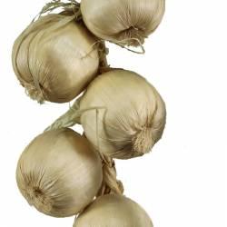 Ristra de 12 cebollas secas artificiales