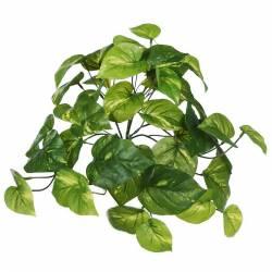 Pequeña planta artificial colgante pothos