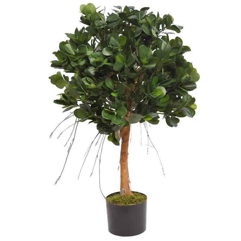 Ficus panda artificial con maceta oasis decor - Arboles artificiales ...