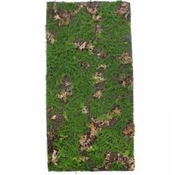 Placa musgo artificial y hojas naturales