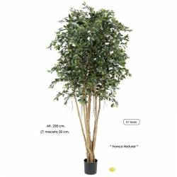 Ficus artificial retusa 220