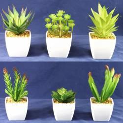 Cactus artificials mini