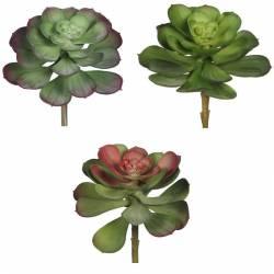 Pequeña planta crasa artificial cactus echeveria