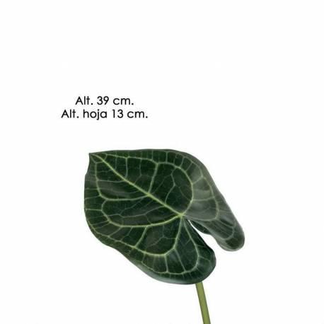 Hojas artificiales Anthurium
