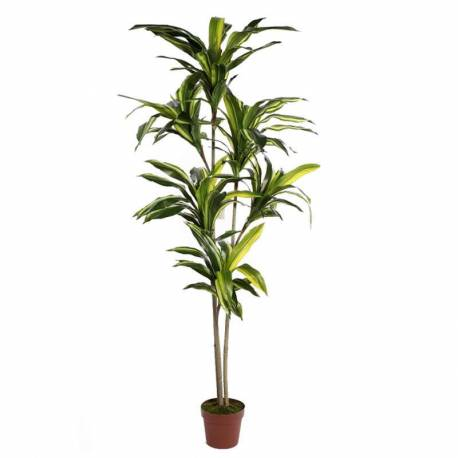 Planta dracena artificial bicolor en maceta 175