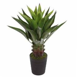 Planta agave artificial amb test 085