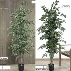 Ficus artificial exotica 170