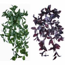 Planta artificial colgante tradescantia