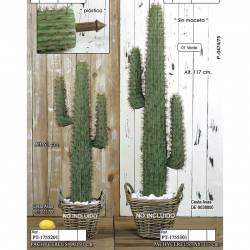 Cactus artificial pachycereus sense test