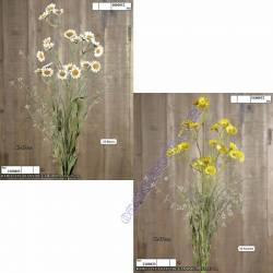 Ramillete silvestre con manzanilla artificial