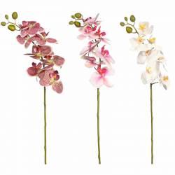 Orquidia phalaenopsis artificial