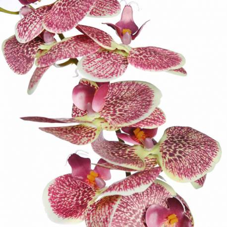Orquidea phalaenopsis artificial