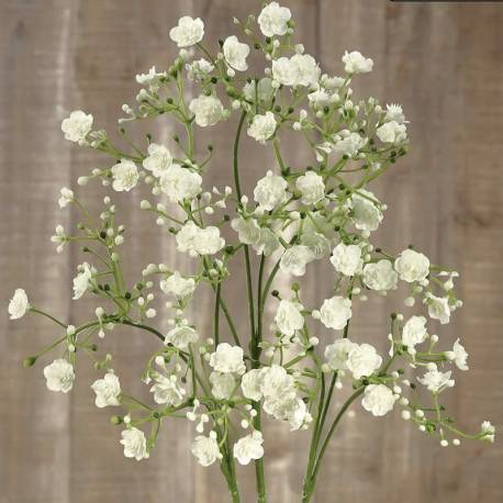 Gypsophila artificial paniculata