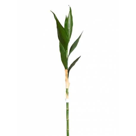 Branca bambu de la sort artificial recta
