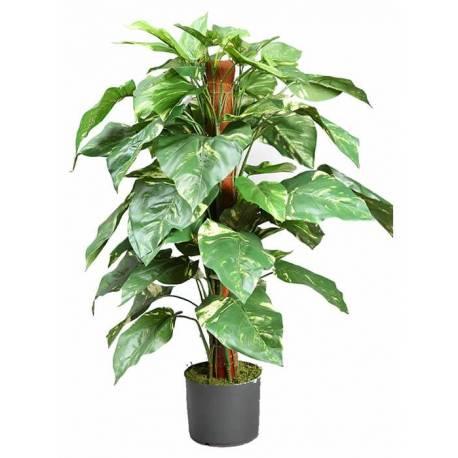 Planta pothos artificial con tutor 092