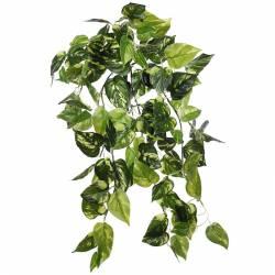 Planta pothos artificial colgante 050