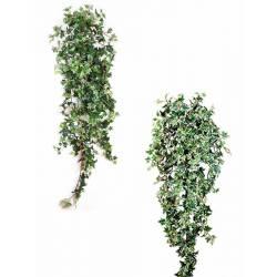 Hedra artificial que penja fulles xicotets