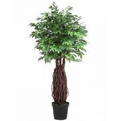 Ficus artificial tronc lianes amb test