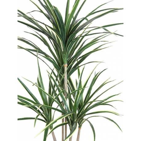 Planta yuca artificial 145