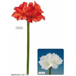 Amaryllis artificial 4 flores