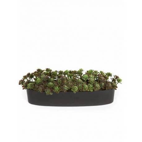 Jardinera plantes crasses artificials suculent mini