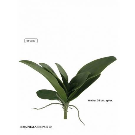 Hojas artificiales phalaenopsis con raices grande