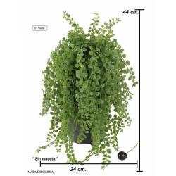Planta dischidia artificial sin maceta