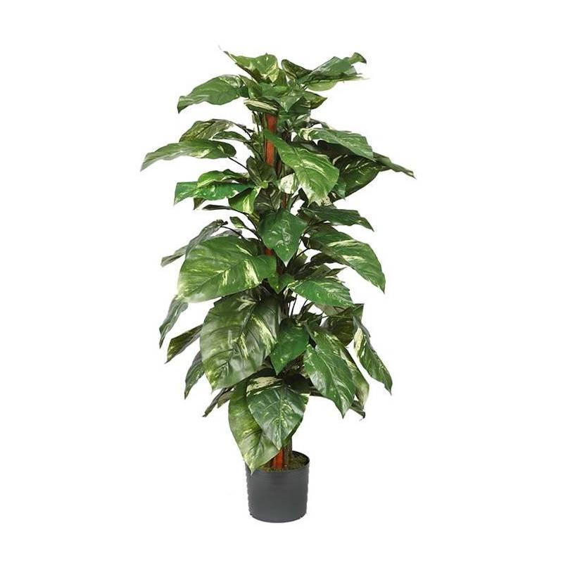 Herbicidas Y Mallas Antihierba Leroy Merlin Plantas Artificiales