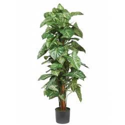 Planta singonio artificial con tutor 122