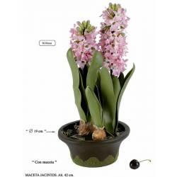 Flores jacintos artificiales en maceta
