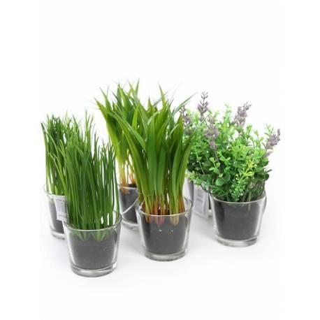 Joc 6 plantes herbes artificials amb test cristall