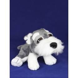 Peluix gos Schnauzer ulls grans mitja