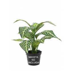 Pequeña planta artificial aphelandra sin maceta