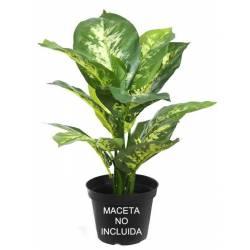 Pequeña planta artificial diefembaquia sin maceta