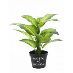 Pequeña planta artificial diefembaquia maculata sin maceta